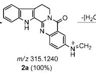 WuZhuYu-03