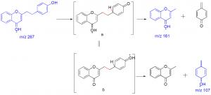 Comp3_pathway