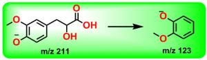 丹参素甲醚的裂解途径