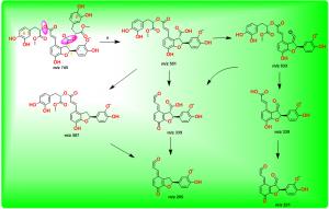 紫草酸B二甲酯的裂解途径
